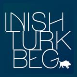 Айниш Турк лого 160