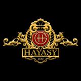 Хаяси Груп лого 160