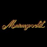 монтенегро лого 160