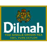 Дилма лого 160