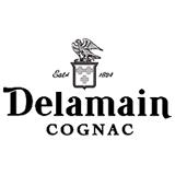 Делмейн лого 160