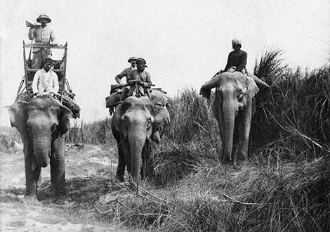 Мойор Джеймс Грант на лов във Индия