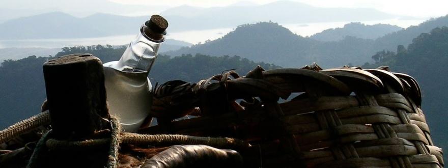 Кашаса националната напитка на Бразилия