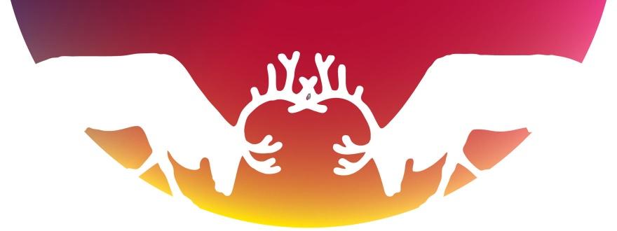 Водка Финландия лого със слънцето