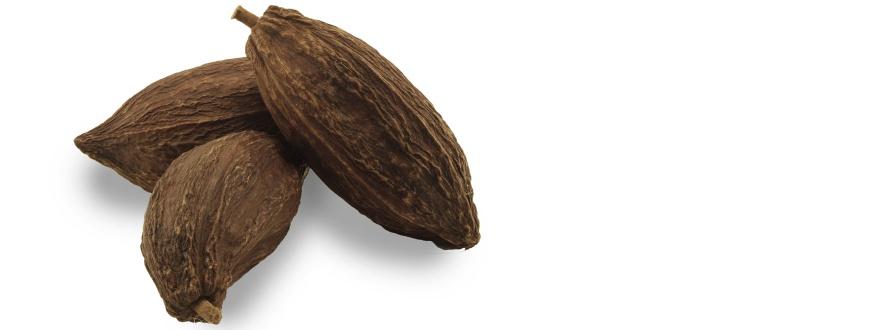 какаови шушулки