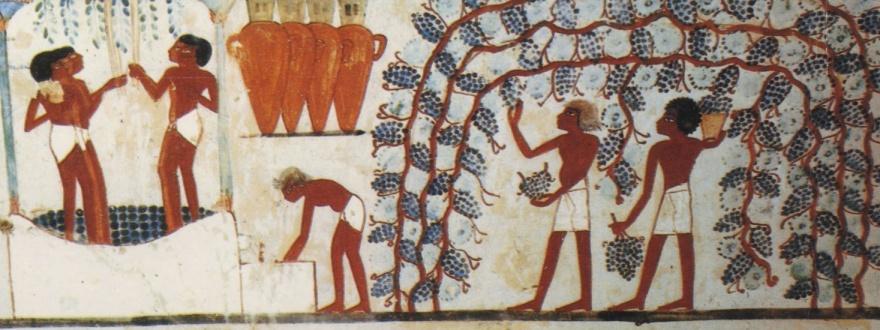 Древни египтяни приготвят вино