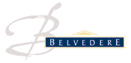 Белведере лого 63