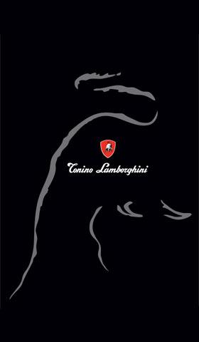 Корпоративен банер на Тонино Ламорджини
